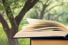 Open book over the landscape background Stock Photos