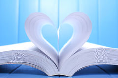 Open book pages Royalty Free Stock Images