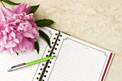 Open book with pen. And romantic flowers Stock Images