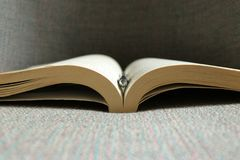 An open book and a pen Royalty Free Stock Images