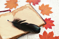 Open book, red leaves and black quill Stock Photography
