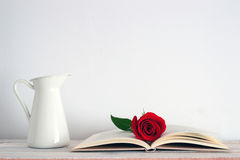 An open book with a red rose flower on it. Stock Photo