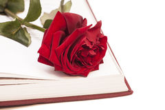 Open book and red rose Royalty Free Stock Photo