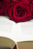 The open book and red roses. Stock Photo