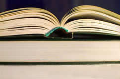 Open  book. Resting on book Royalty Free Stock Image