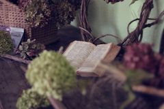 Open book in room with flowers Royalty Free Stock Photography