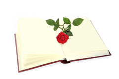 Open book and rose. Royalty Free Stock Images
