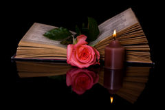 Open book and rose Stock Photo