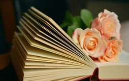 Open book with roses Stock Photos