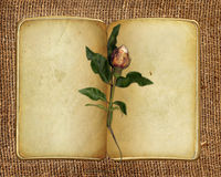 Open book on sacking background with rose  Royalty Free Stock Images