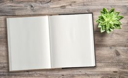 Open book succulent wooden background Minimal flat lay. Open book and succulent plant on wooden background. Minimal flat lay Stock Images