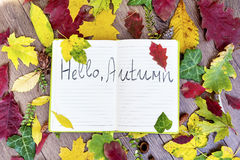 Open book surround by leafs with hello autumn sign Royalty Free Stock Image