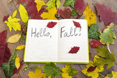 Open book surround by leafs with hello autumn sign Royalty Free Stock Photography