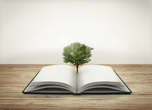 Open book with tree Stock Image