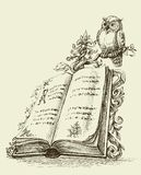 Open book vintage stand and cute owl. Symbol of wisdom Stock Photos