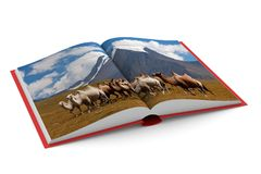 Open book on white background.  3D illustration.  Royalty Free Stock Photography
