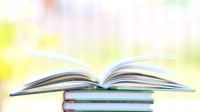 Open book in wind, green garden background. stock video footage