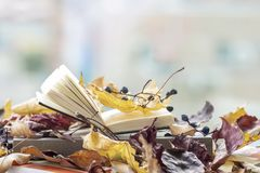 Open book on the windowsill close-up, covered with autumn leaves, copy space, sunny fall day, modern background. Top royalty free stock photo