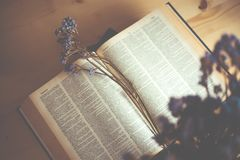 Open book on wood desk in the library room with blurred focus fo Stock Image