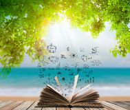 Open book on wood floor with green grass Stock Image