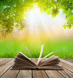 Open book on wood floor with green grass and leaf Royalty Free Stock Photo