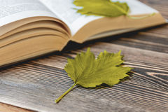 Open Book on Wooden Desk with Autumn Leaves Close up. Stock Images
