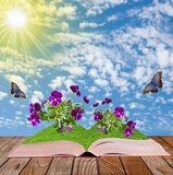 Open book on a wooden surface  with  flowers  and butterflies Royalty Free Stock Image