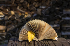 Open book with yellow autumn leaf Stock Photo