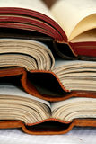 Open books. Open antique books in leather covers Stock Images