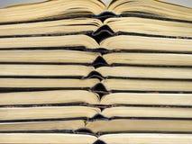 Open books Stock Photo