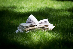Open books on grass in a green park. Horizontal side view of many open books on top of each other standing on green grass in park in the shadows of the trees Royalty Free Stock Photo