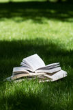 Open books on grass in a green park. Vertical side view of many open books on top of each other standing on green grass in park in the shadows of the trees Royalty Free Stock Images