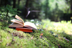 Free Open Books Outdoor. Knowledge Is Power. Book In A Forest. Book On A Stump Stock Photos - 87129303