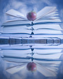 Open books reflected in water. Winter story Stock Image