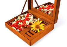 Open box with decoration and flower Royalty Free Stock Photo