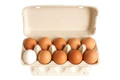 Open box with eggs. Isolated on the white background Royalty Free Stock Images