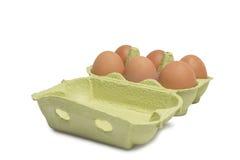 Open Box of Eggs Stock Image