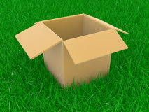 Open box on a grass Royalty Free Stock Photos