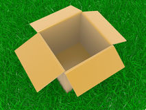 Open box on a grass Royalty Free Stock Images