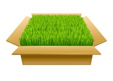 Open box with green grass Stock Images