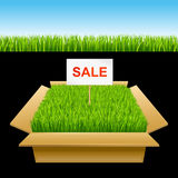 Open box with green grass. Sale Stock Image