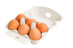 Open box of raw eggs Stock Images