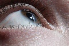 Open brown male eye looking up. Macro Stock Photos