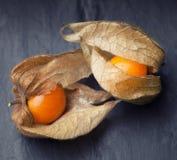 An open calyx, exposing the ripe fruit of physalis peruviana Stock Photo