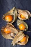 An open calyx, exposing the ripe fruit of physalis peruviana. On a light plate Stock Photos