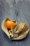 An open calyx, exposing the ripe fruit of physalis peruviana. On a vintage tile plate Stock Image