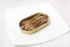 Open can of fish in a plate Stock Images