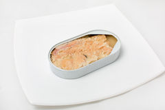 Open can of fish in a plate Royalty Free Stock Photography