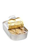 Open can of sardines Stock Image