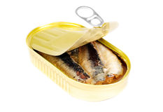 Open can of sardines in oil Stock Images